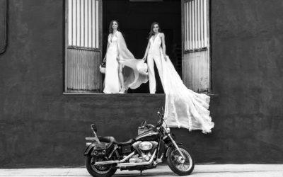 Colección Motor Maids